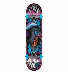 Skate komplet SPEED DEMONS - Baboon Pink/Blue 2020 vell.7,75